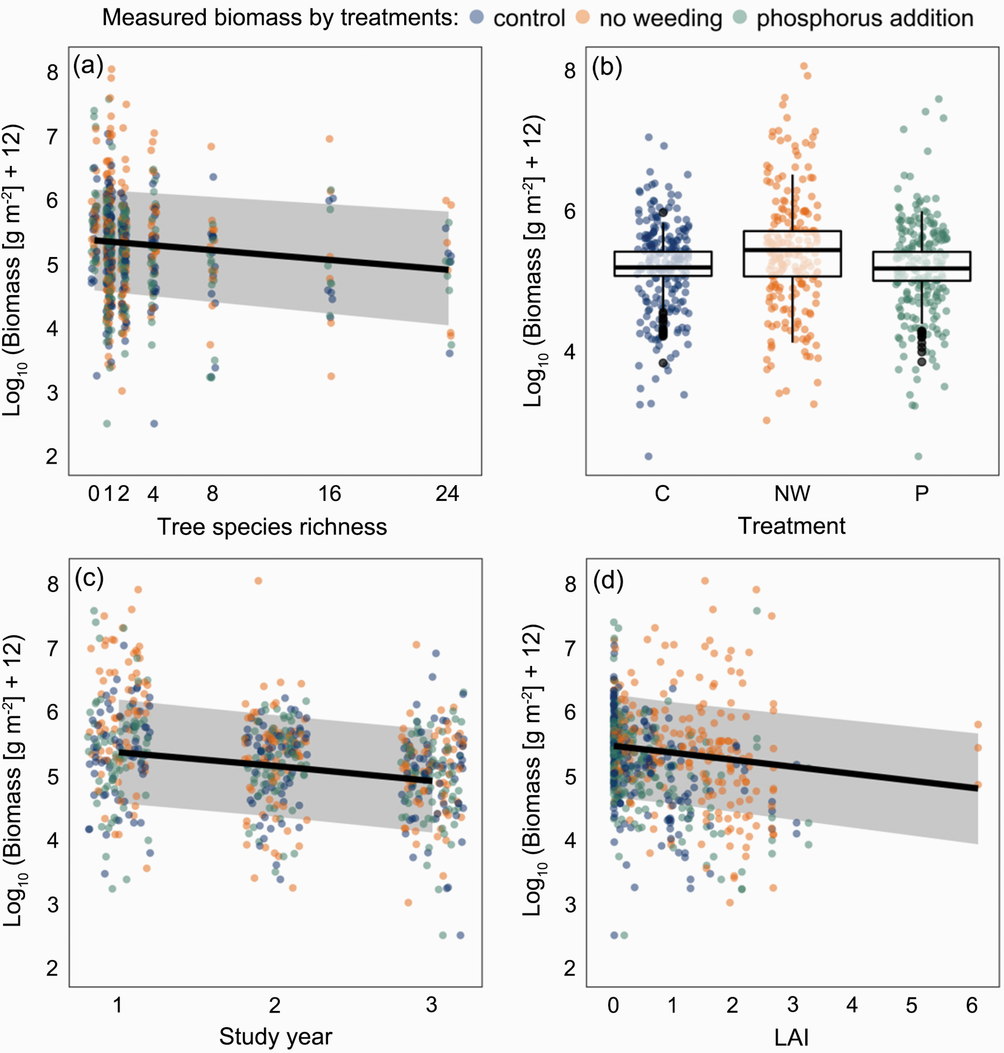 Drivers of understorey biomass: tree species identity is more important than richness in a young forest